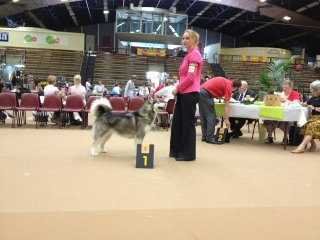 Pink wins at Arnhem and Ghost wins at AMCUK