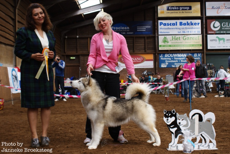 Mirage wins best puppy in breed